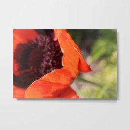 Poppy & Stem Metal Print