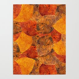 Autumn moods n.1 Poster