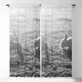 Bunny // Black and White Cute Nursery Photograph Adorable Baby Bunnies in the Field Blackout Curtain