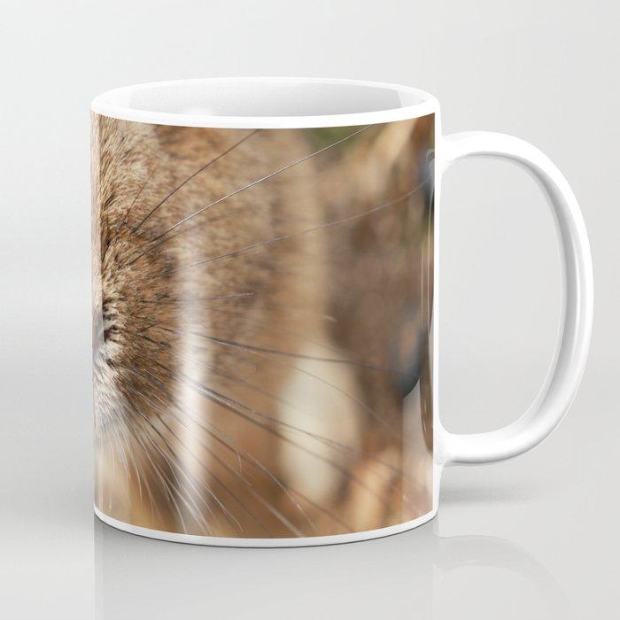 Rabbit Whiskers Coffee Mug
