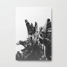 No. 6 Metal Print