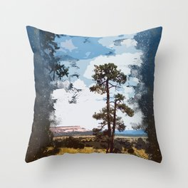 New Mexico Landscape Throw Pillow
