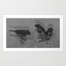 Stop Motion  Art Print