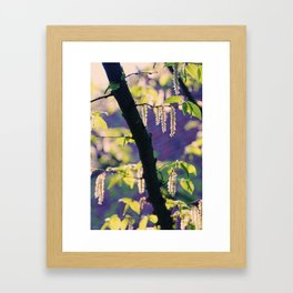 Spring Impression1 Framed Art Print