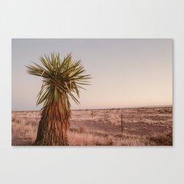 High Desert Sunset Canvas Print