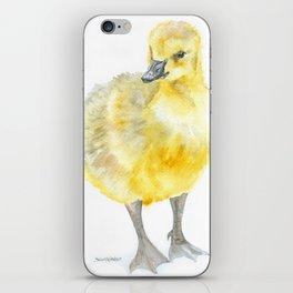 Baby Gosling Goose Watercolor iPhone Skin