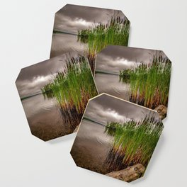 Driftwood And Cattails Coaster