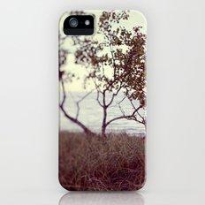 The Coast #2 iPhone (5, 5s) Slim Case