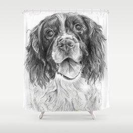 Springer Spaniel Shower Curtain