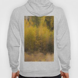 Fall color forest #decor #buyart #society6 Hoody