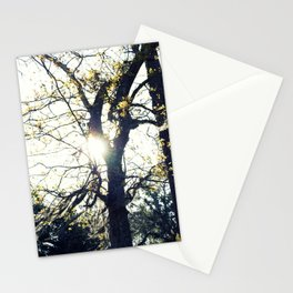 Golden Moss Stationery Cards
