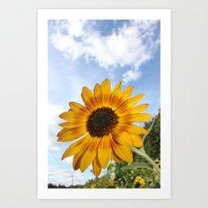 Sunhine & Sunflowers Art Print