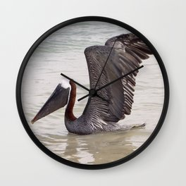 Pelican in the water Wall Clock