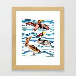 Pelicans Framed Art Print