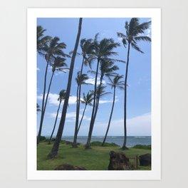 Coconut Trees - Kaua'i, Hawai'i Art Print