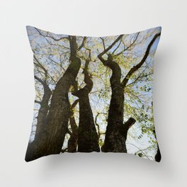 Evening Gathering Throw Pillow
