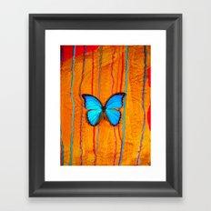 Blue Morpho on #12 Framed Art Print