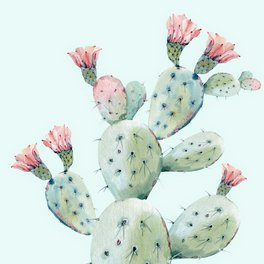 Floor Pillow - Cactus 1 - Wheimay