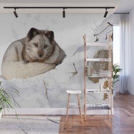 Sweet fox in winter Wall Mural