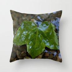 Glaze Throw Pillow