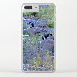 Geese in the Reeds Clear iPhone Case