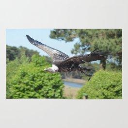 Rüppells Vulture Rug