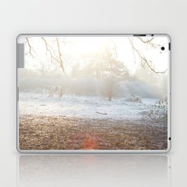 Winter Ponies Laptop & iPad Skin