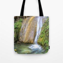 Autumn waterfall Tote Bag