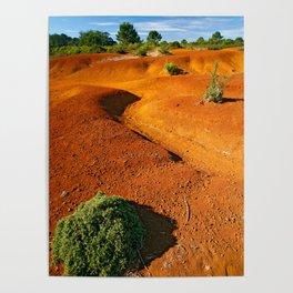 Small desert Poster