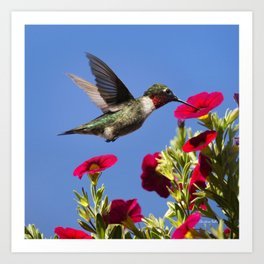 Hummingbird Moment Art Print