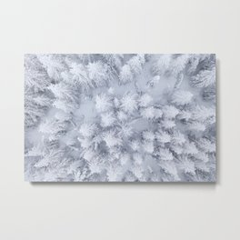 Winter forest from above Metal Print