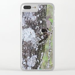 Motley Residents Clear iPhone Case