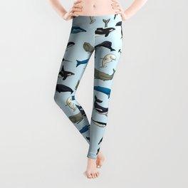 Whales Leggings