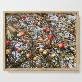 red apples on the branches Serving Tray