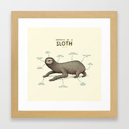 Anatomy of a Sloth Framed Art Print
