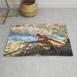 Squirrel on branch Rug