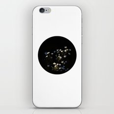 Asters iPhone & iPod Skin