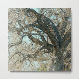 Leafless Bower Metal Print