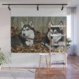 huskies in the leaves Wall Mural