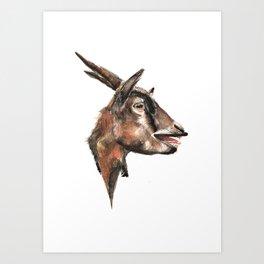 Salivating Goat Art Print