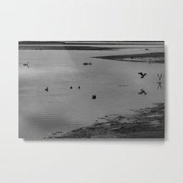 Birds Birds Water Metal Print