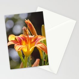Lilies in the Sunshine Stationery Cards