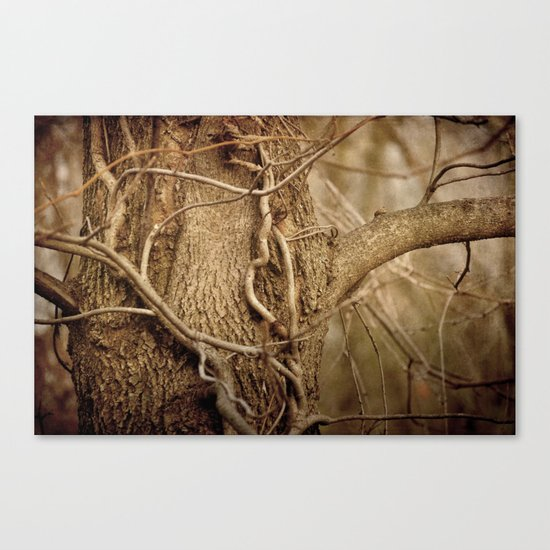 Life on Life Canvas Print