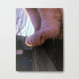 Cute white cat paws details Metal Print