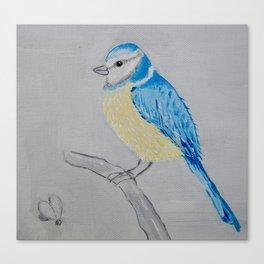 Blue tit  Canvas Print