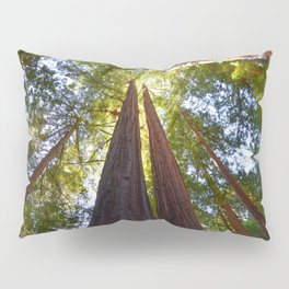 California Redwoods Pillow Sham