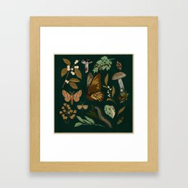 Green Natural Explorer Framed Art Print