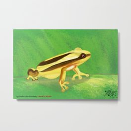 Endangered collection: Clarke's Banana Frog Metal Print