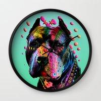 pit bull Wall Clocks featuring pit bull  by mark ashkenazi