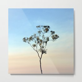 Slender Gum in Smoke Haze Metal Print